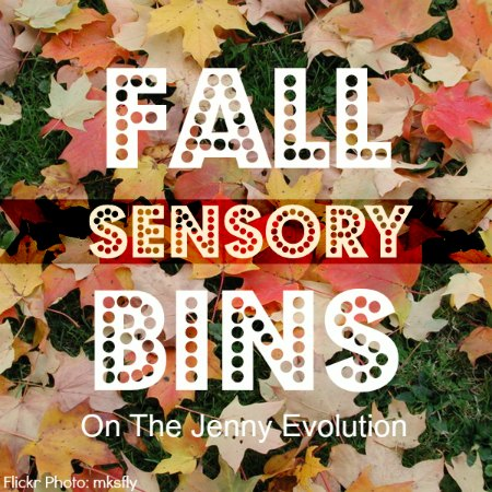 10 Fall Sensory Bins | The Jenny Evolution
