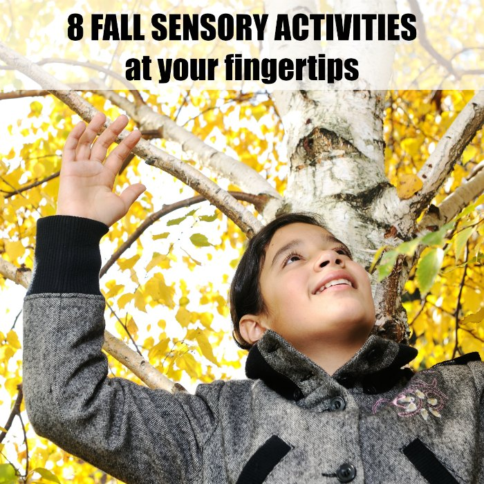 8 Fall Sensory Activities at your fingertips | Mommy Evolution