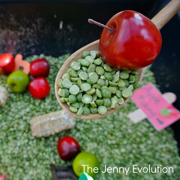 Fall Apple Farm Sensory Bin | The Jenny Evolution