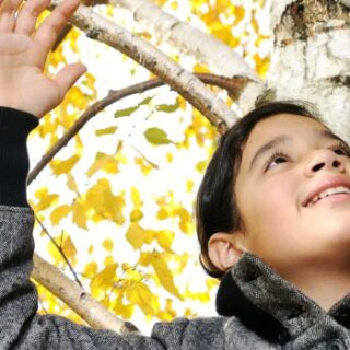 8 Fall Sensory Activities at Your Fingertips