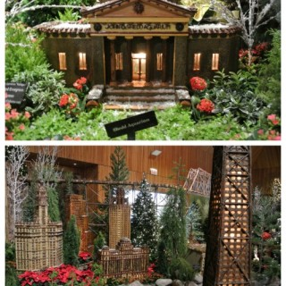 Chicago Botanic Gardens Holiday Trains Wordless Wednesday