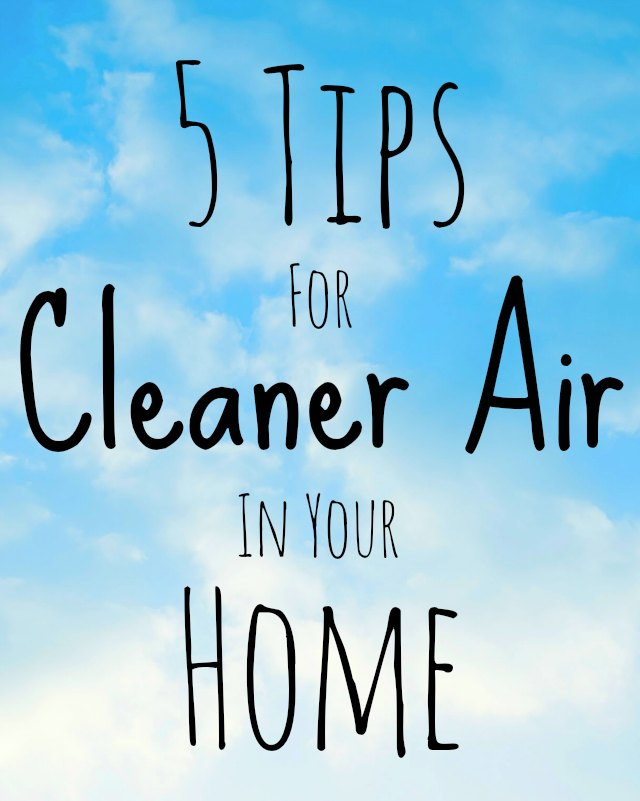 Luckily You Can Perform A Few Simple Tasks To Help Reduce Or Eliminate These Indoor Air Pollutants