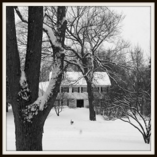 Winter Wonderland Wordless Wednesday