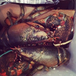 Lobsters Wordless Wednesday