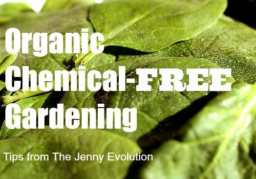 organicgardening