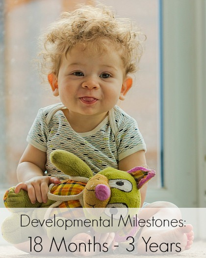 Major Developmental Milestones for Toddlers Aged 18 Months - 3 Years | Mommy Evolution