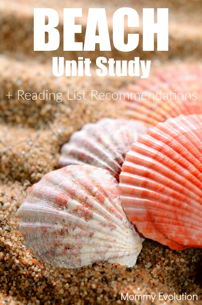 Beach Unit Study for Preschool and Elementary Plus Books Reading List| Mommy Evolution