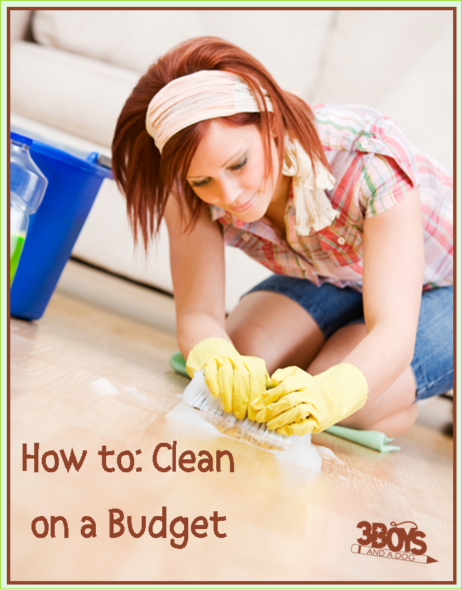 How to Clean on a Budget! Great ideas from 3 Boys and a Dog