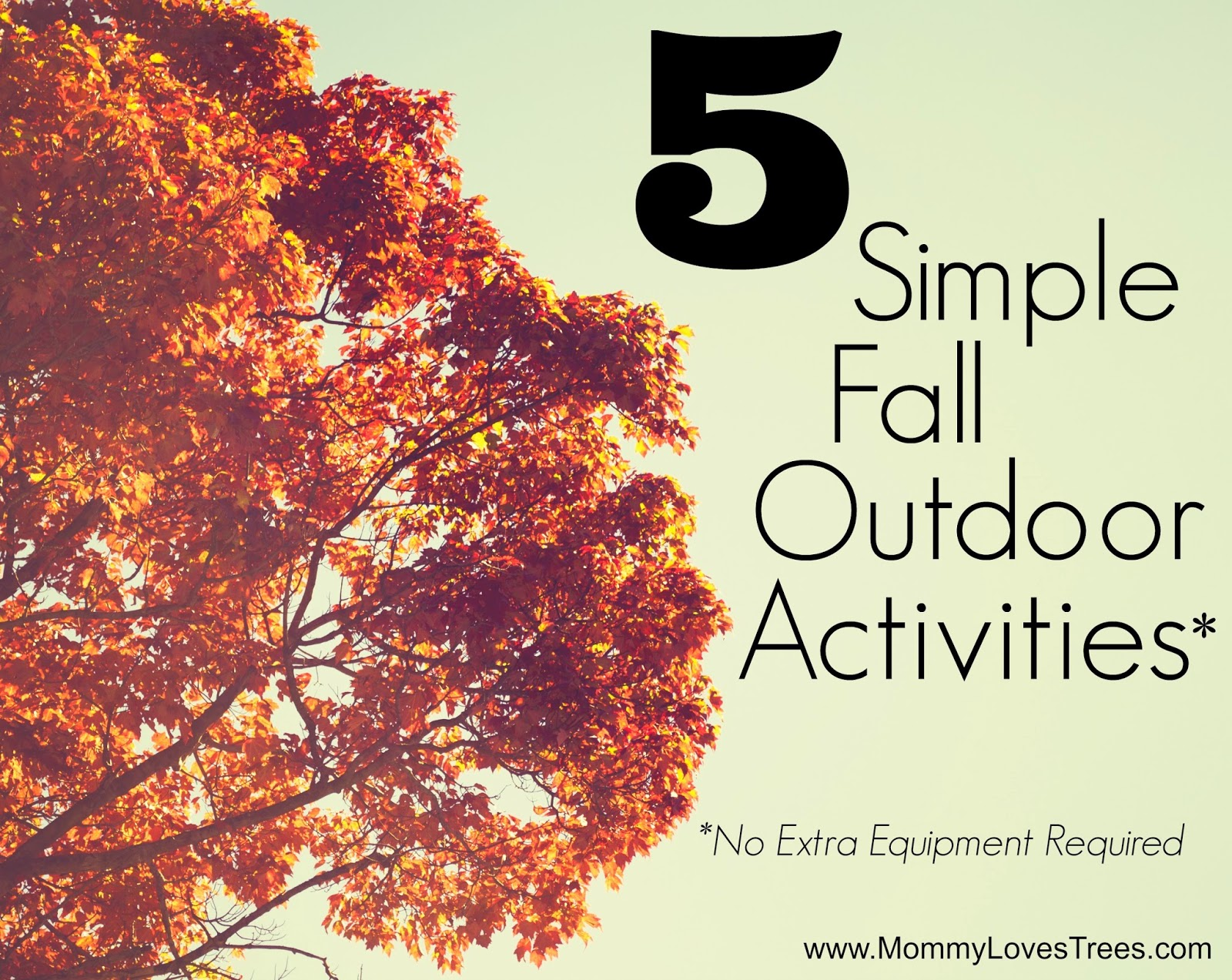 5 Simple Fall Outdoor Activities from Mommy Loves Trees