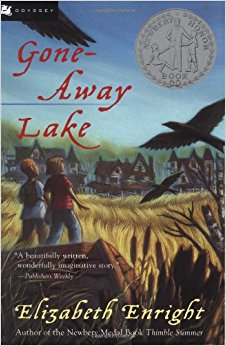 Gone-Away Lake (Gone-Away Lake Books) Paperback by Elizabeth Enright