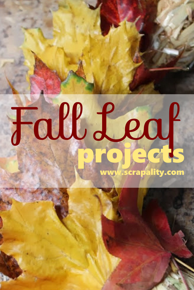 Check out these awesome Fall Leaf Projects from Scrapality