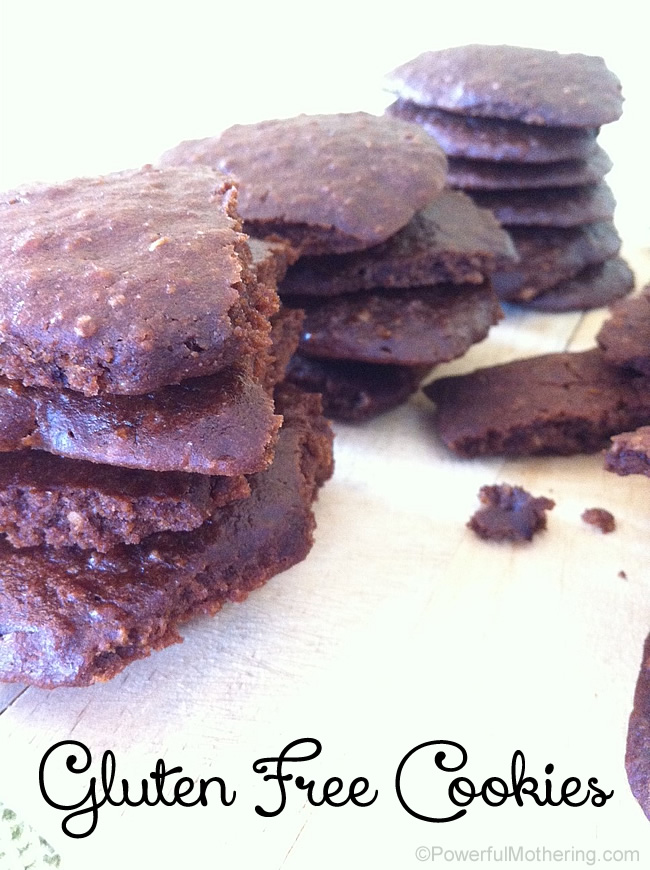 Chocolate Gluten Free Cookie Recipe | Powerful Mothering