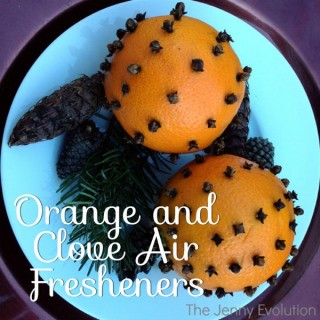 Pretty Orange and Clove Decorations