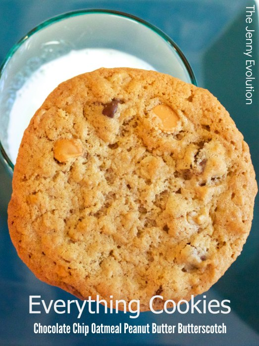 Everything Cookies Recipe! Chocolate Chip Oatmeal Peanut Butter Butterscotch | Mommy Evolution