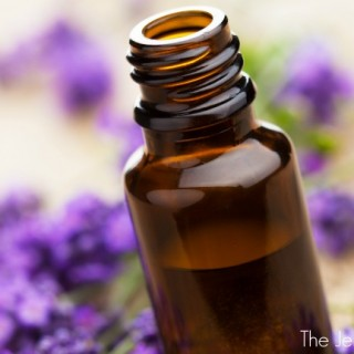 Essential Oil Tips for Families