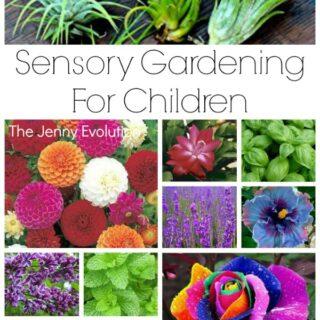 Sensory Garden Ideas for Children - Gardening with Kids!