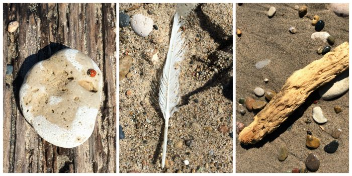 Found Objects on the Rock Beach