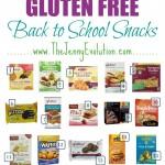 Gluten Free Back to School Snacks | The Jenny Evolution