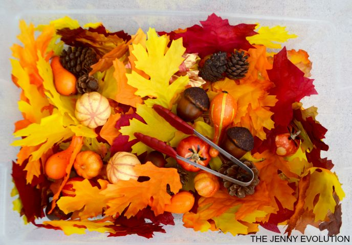 Fine Motor Fall Sensory Bin that Works Visual Skills, too! The Jenny Evolutoin
