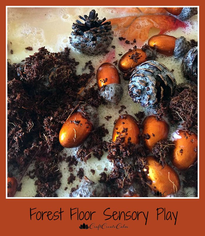 Forest Floor Fall Sensory Activity | The Jenny Evolution