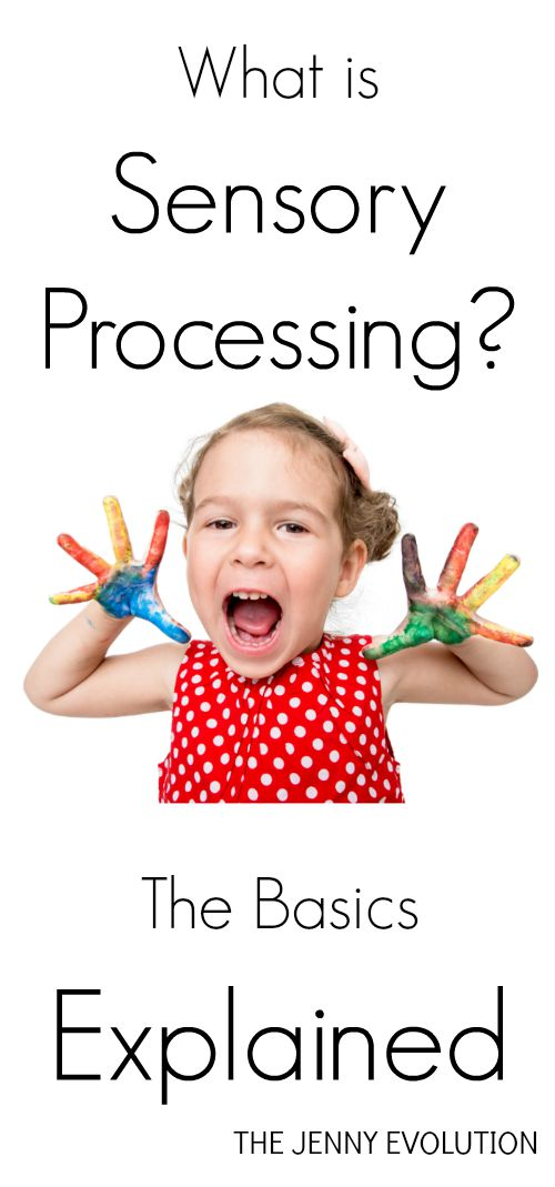 What Is Sensory Processing? The Basic Explained! on Mommy Evolution