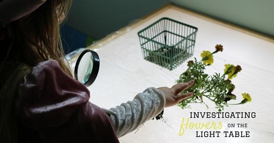 investigating (1)