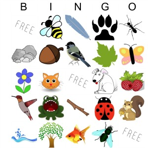 Nature Bingo! for Kids Printable