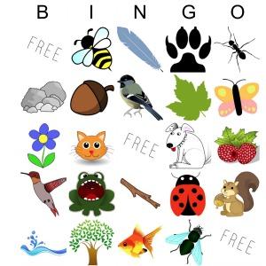 Bingo Square