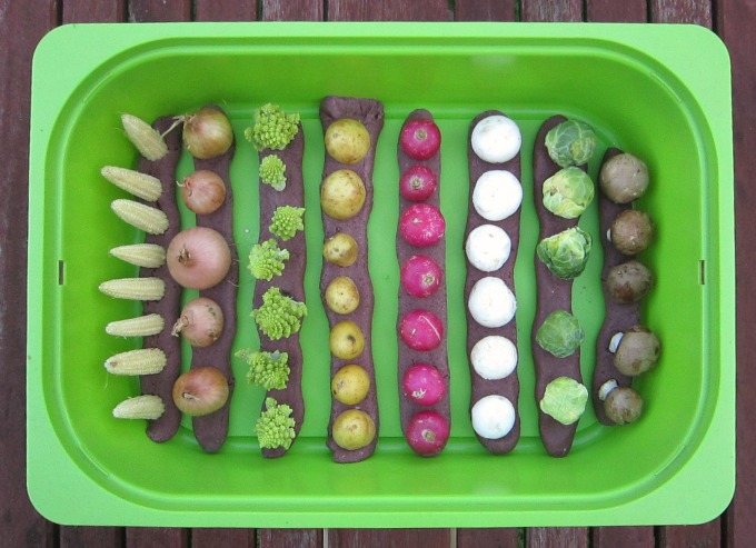 How to make a harvest sensory bin