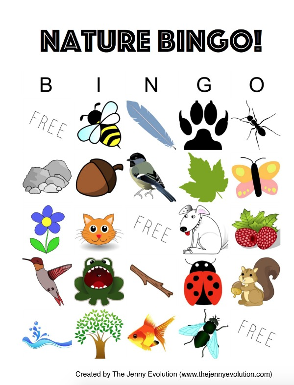 Nature Bingo FREE Printable: A fun outdoors activity for kids! on Mommy Evolution
