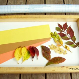 Fall Leaves Bookmark Craft for Kids