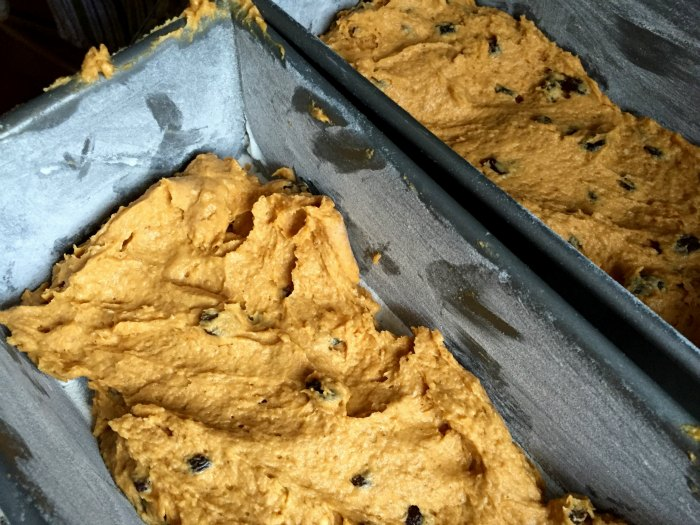 Pumpkin Bread Dough in Pans