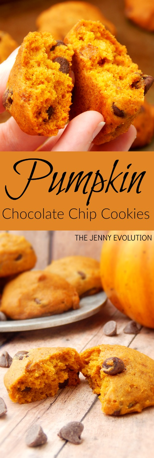 Pumpkin Chocolate Chip Cookies Recipe on Mommy Evolution #pumpkin #cookies #fallrecipe