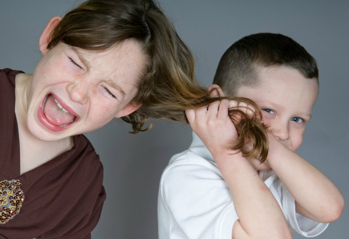 Sibling Rivalry Solutions