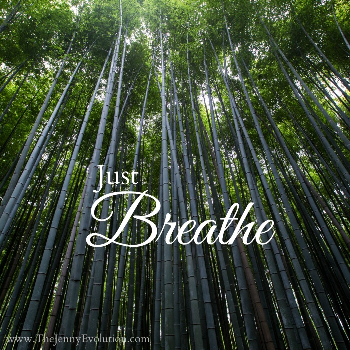 Just Breathe. (One Line Affirmations for Moms)