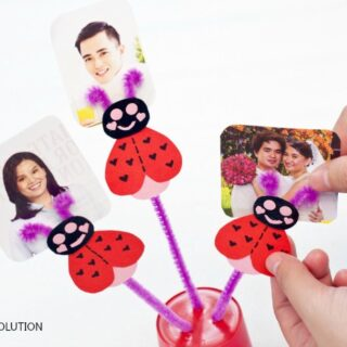 Adorable Love Bug Valentine Photo Holder Craft