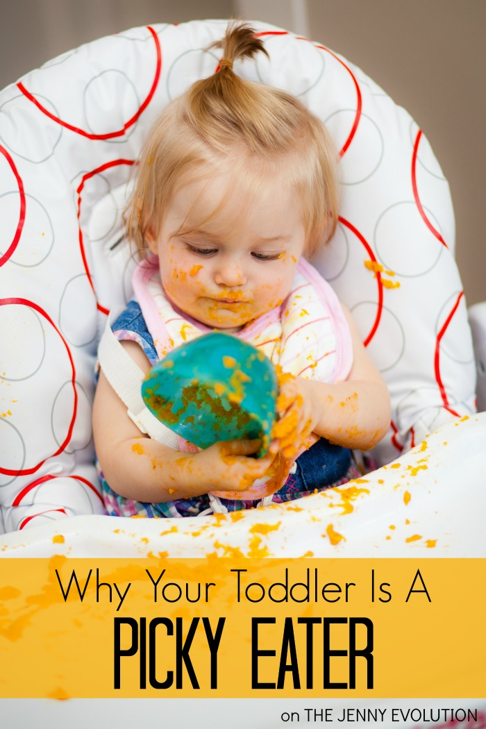 Why Your Toddler is a Picky Eater