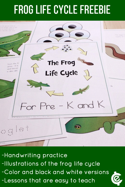 Free Frog Lesson to Leap Into | The Jenny Evolution
