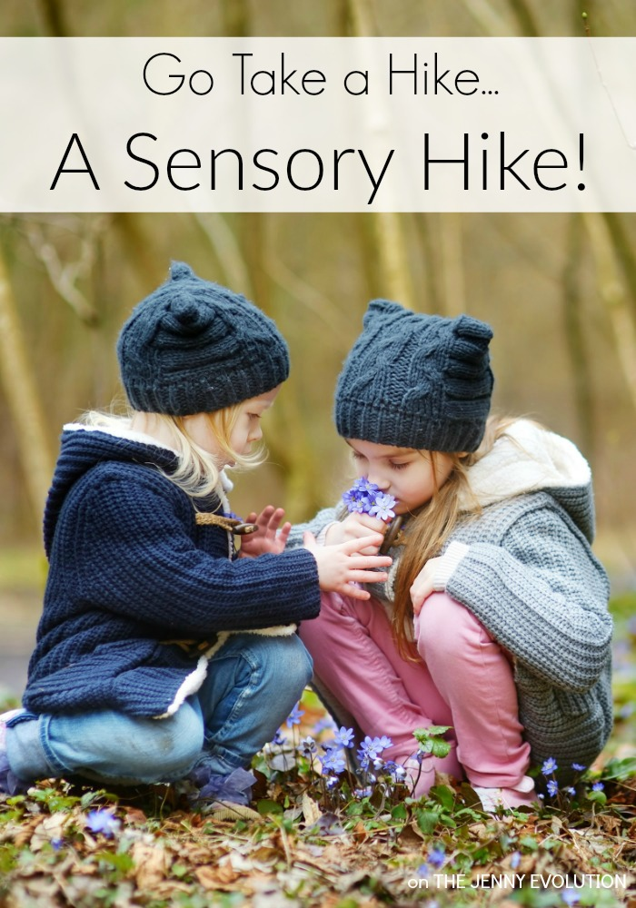 Take a Nature Sensory Hike