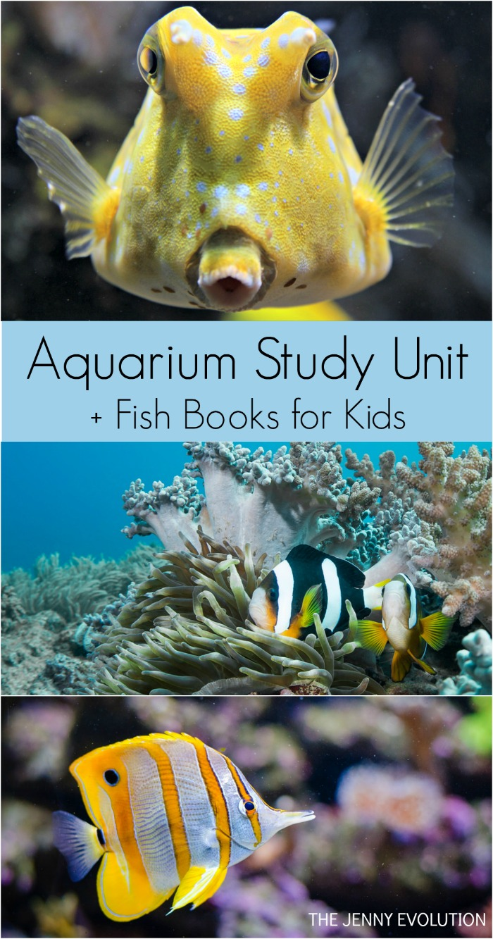 Aquarium Study Unit
