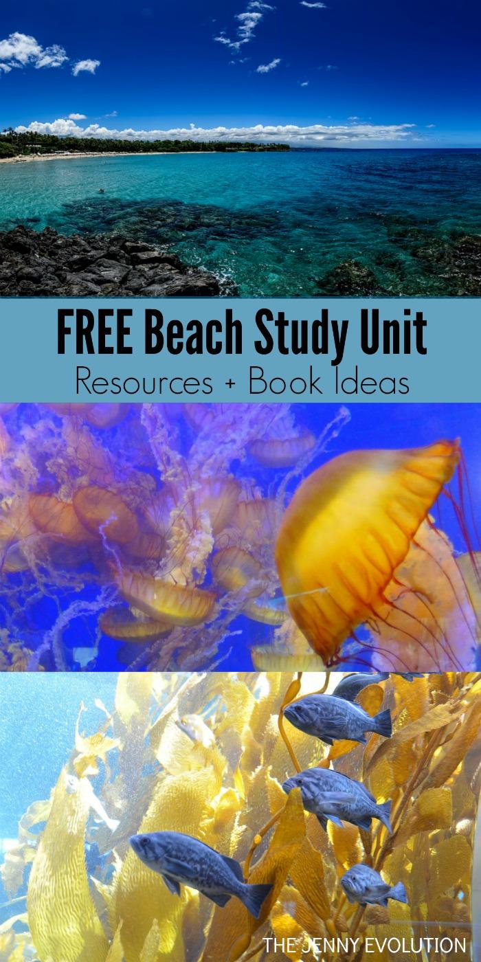 FREE Beach Study Unit Resources + Children's Book Ideas