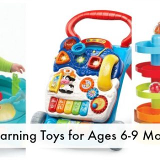 Development & Infant Learning Toys for Ages 6-9 Months