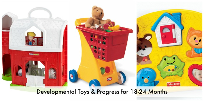 Developmental Toys & Progress for 18-24 Months