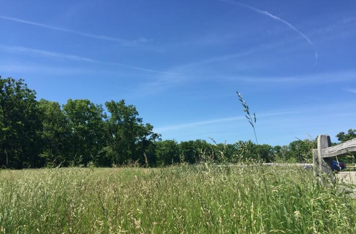 Fort Sheridan Grasslands