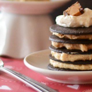 No Bake Chocolate Peanut Butter Cakes