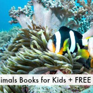 Books about Sea Animals + Ocean Animals Unit Study
