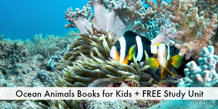 books about sea animals
