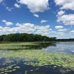 Hastings Lake Nature Hike, Lake County Illinois