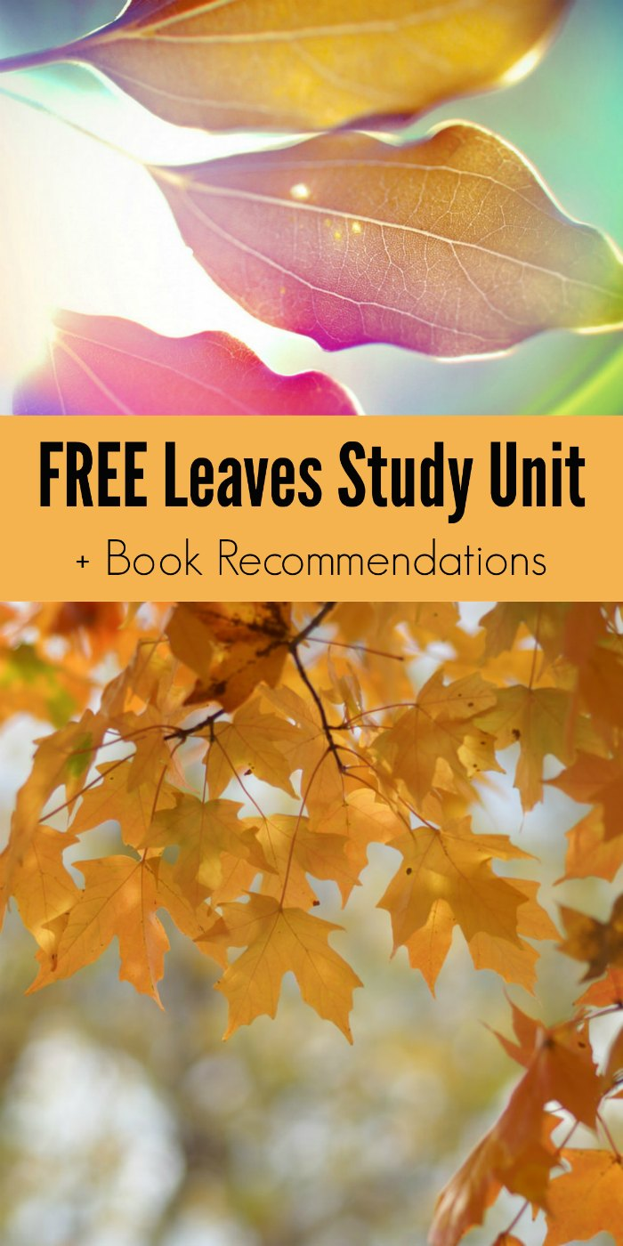 FREE Leaves Study Unit Resources + Book Recommendations about Fall Leaves
