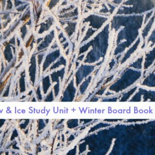 winter-snow-ice-study-unit-fb
